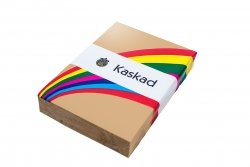 Kaskad A4 160gsm Lapwing Brown Tinted Card